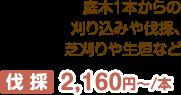 庭木1本からの刈り込みや伐採、芝刈りや生垣など 伐 採 3,150円~本