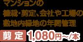 マンションの植栽・剪定、会社や工場の敷地内緑地の年間管理 剪 定 525円~/本