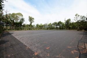 最新の施工実績|熊田造園
